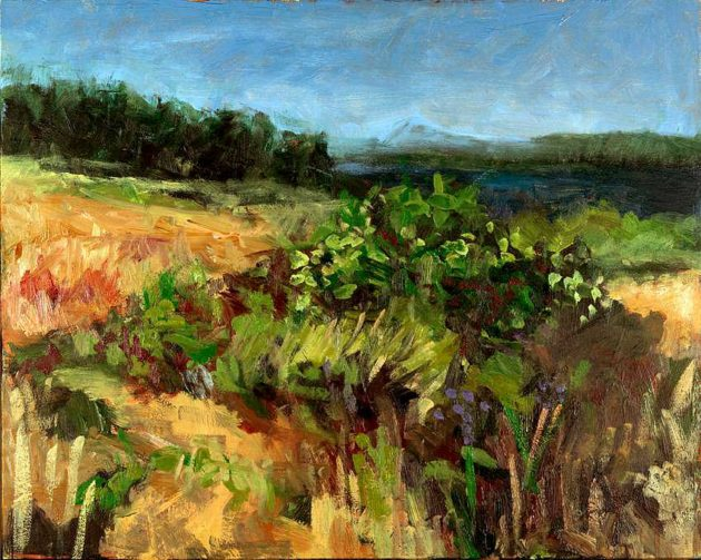 kroseth-landscapes-blackberry-bush