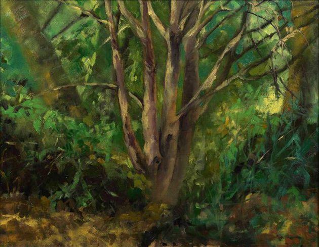 kroseth-landscapes-tree