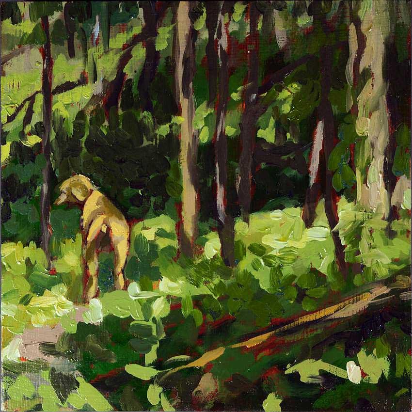 kroseth-morel-hunt-poodle-in-woods