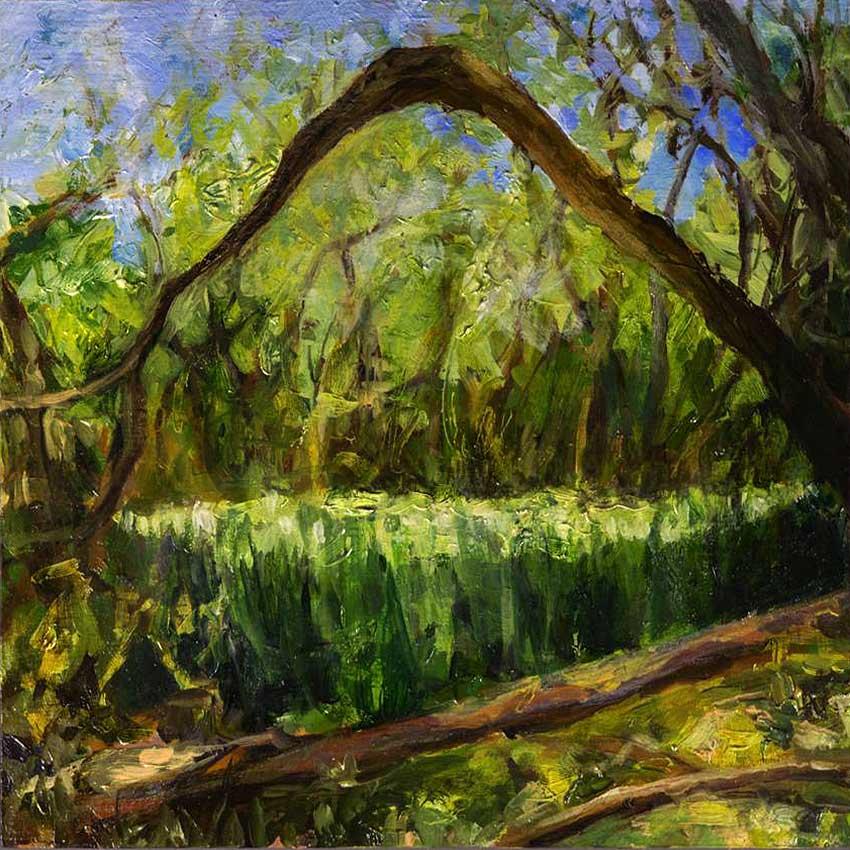 kroseth-morel-hunt-tall-grass-in-woods