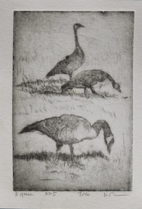 Three Geese 850 wide