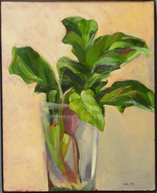 Spinach alla prima 72 px